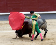 Madrid - bullfighting, one of the most characteristic aspects of Spanish culture