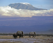 Tanzania - Mt Kilimanjaro is Africa's highest mountain